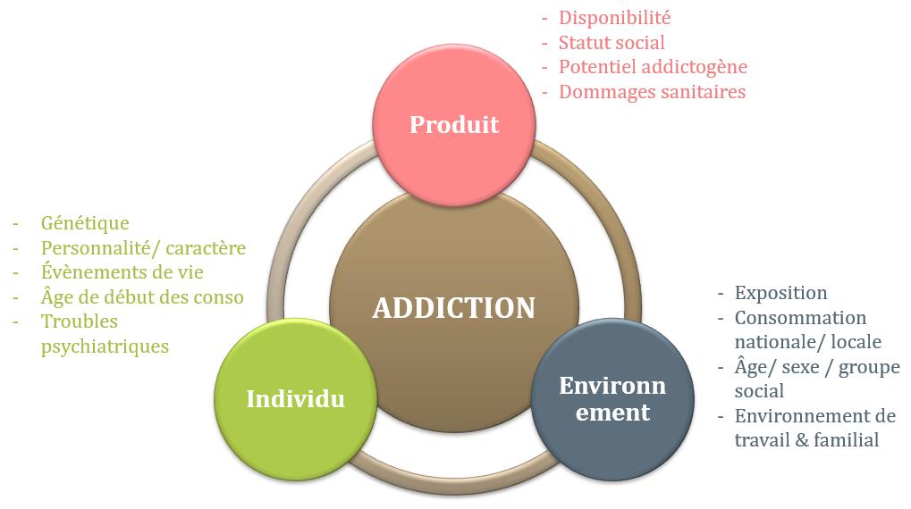déterminants des conduites addictives